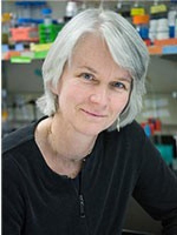 Dr. Julie Overbaugh