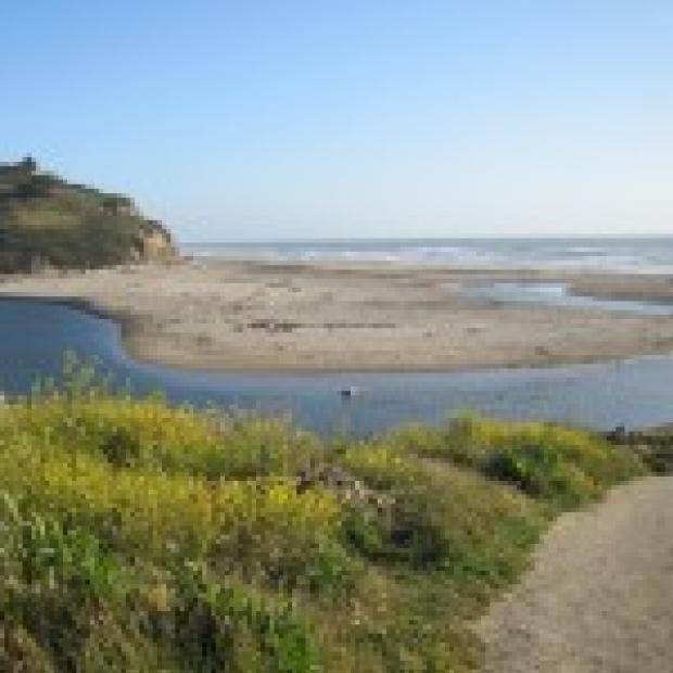 San_Gregorio_Beach