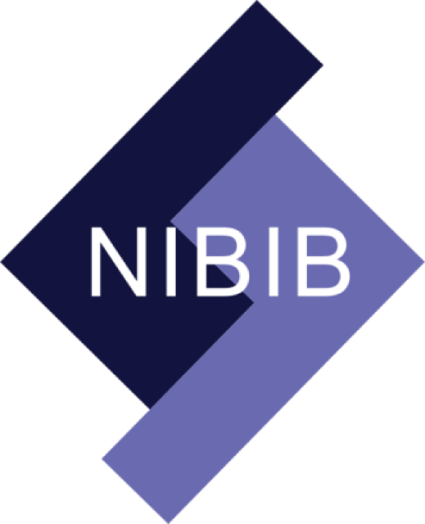NIBIB R21 Trailblazer Award