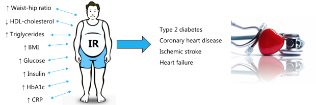 Schematic of IR and CVD