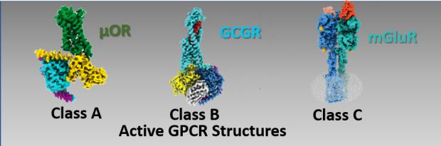 gpcr sturctures