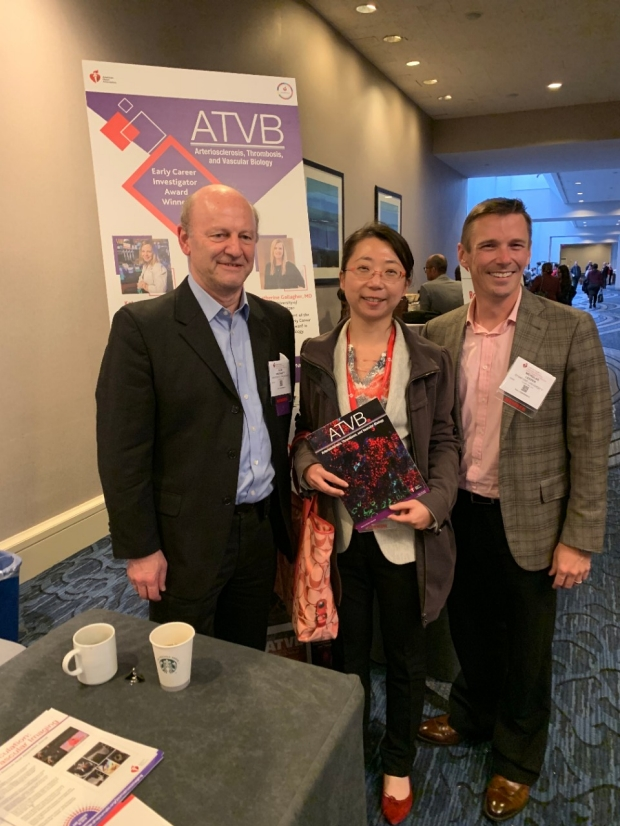 Vascular Medicine Leeper Lab ATVB Ying Wang