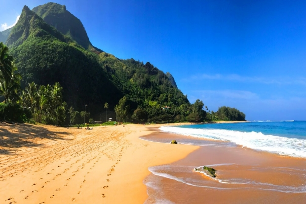 Photo: beach in Hawaii
