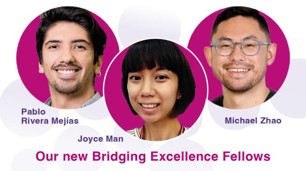 Bridging Excellence Fellows