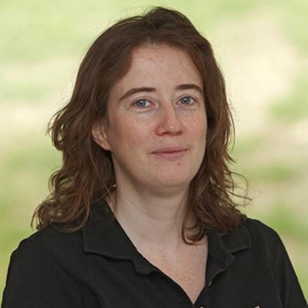 Matthias Hentze