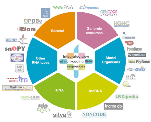 RNAcentral logo including all contributing databases