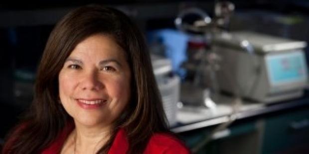 Dr. Bonnie Maldonado
