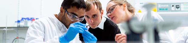 Group of scientists looking at vile