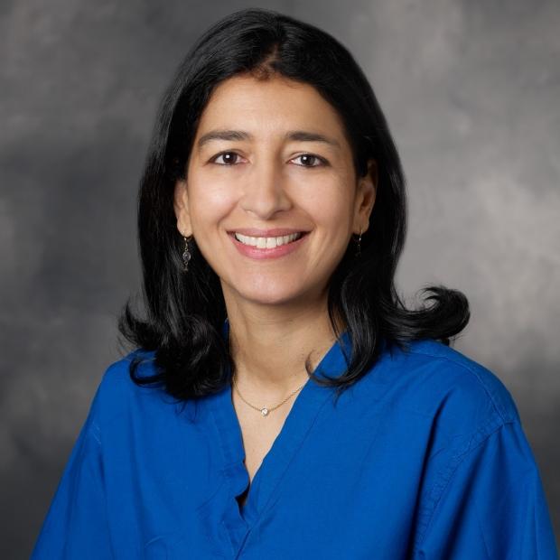 N. Nounou Taleghani MD