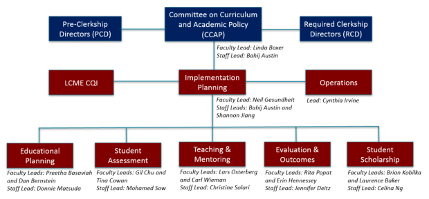 Implementation Committees