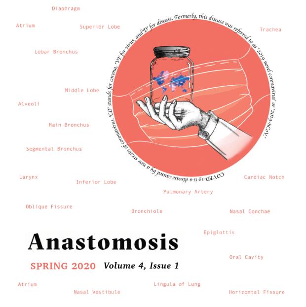 Spring 2020 Anastomosis