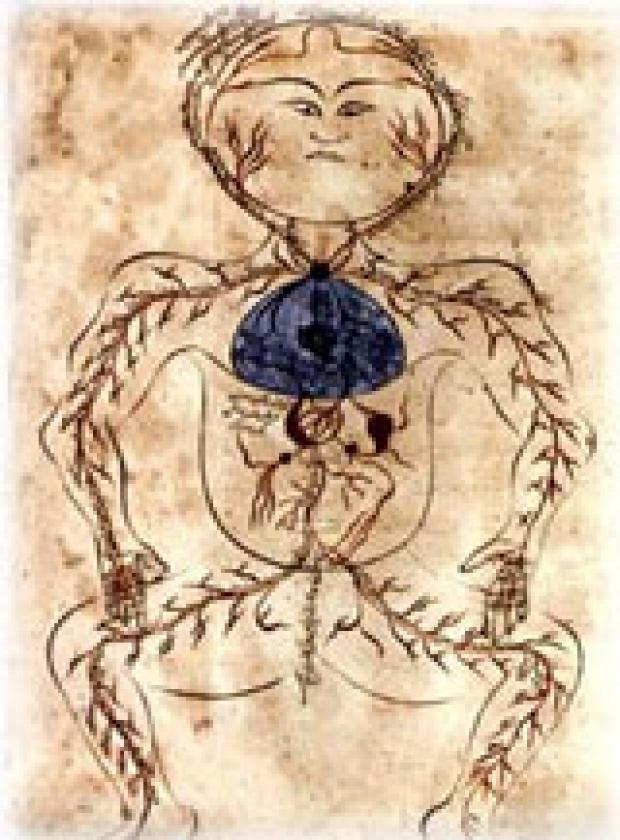 Mansur ibn Muhammed Human Body Circulation, ca. 1488