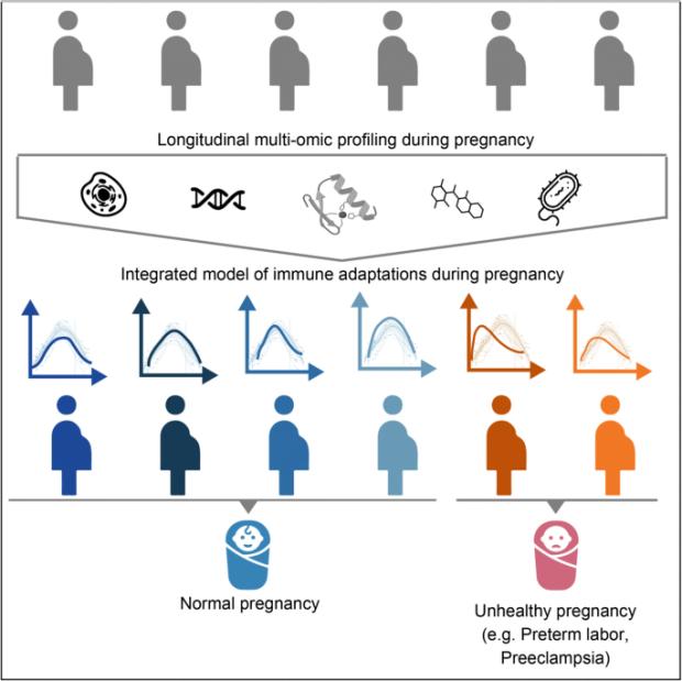 Multiomnic immune clockwork