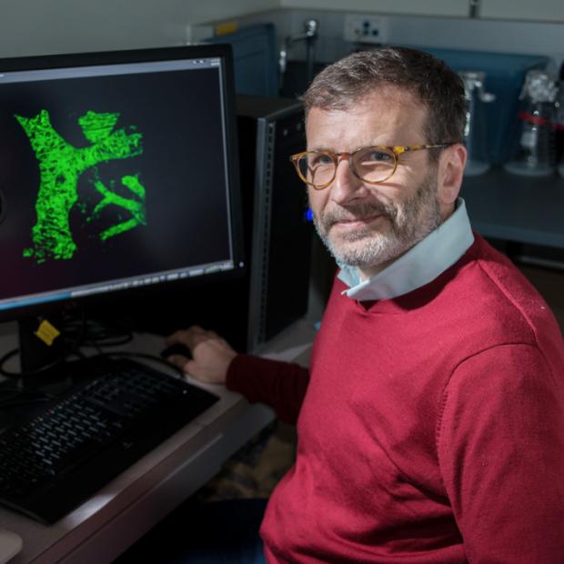 Ross J. Metzger, PhD