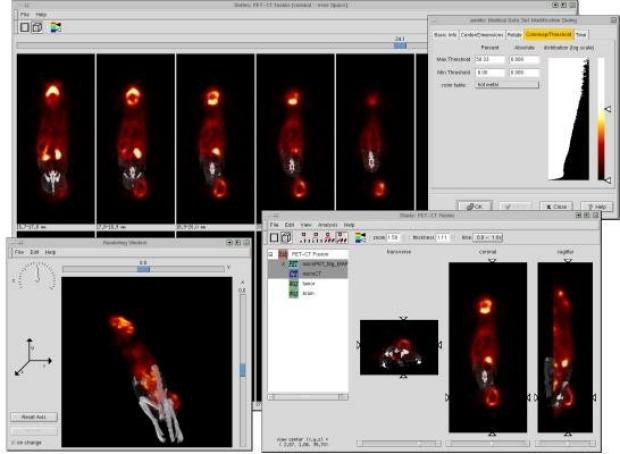 screen shot of AMIDE Software