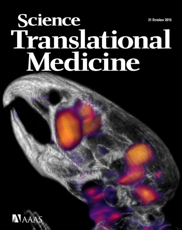 Science Translational Medicine cover, Volume 7, Issue 310