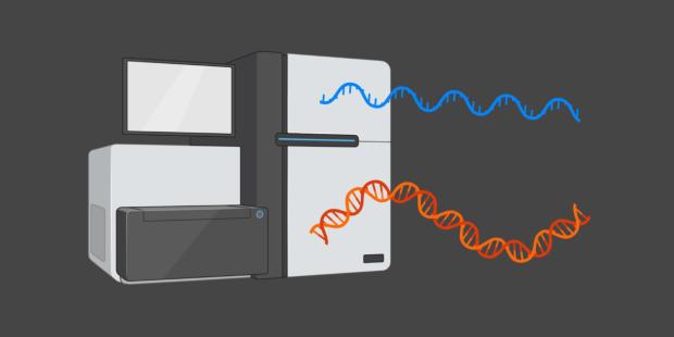 Genomics and Transcriptomics