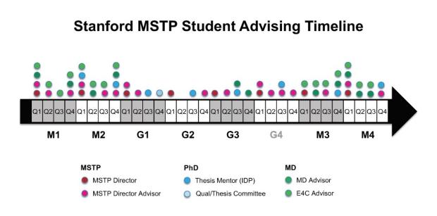 MSTP Advising Timeline