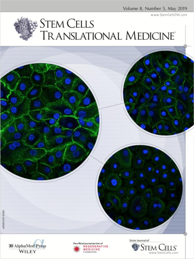 "Magazine cover of ""Stem Cells Translational Medicine"""