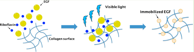 Graphic of pulsed visible light