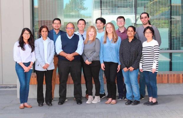 Nayak Research Lab Team, 2019