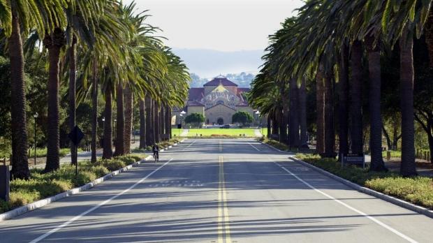 Palm Drive photo