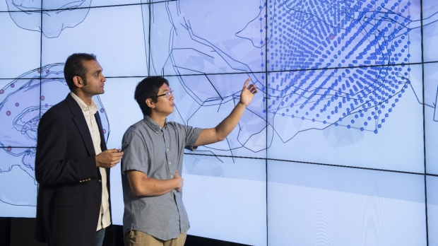 Research on the brain using the HANA Immersive Visualization Environment (HIVE)