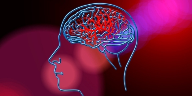 Brain image on red background