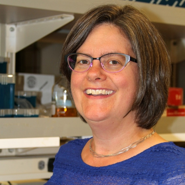 Marion S. Buckwalter, MD, PhD Assistant Professor of Neurology and Neurological Sciences, and Neurosurgery