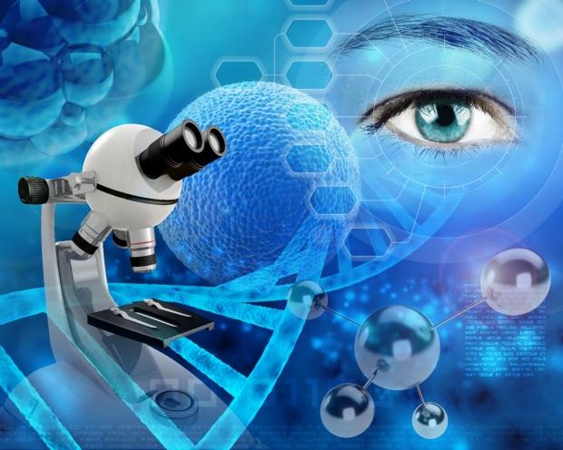 The Stanford Human Ocular Motor Lab
