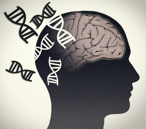 neurology-neurogenetics-neurogenomics-brain