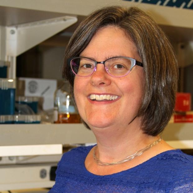 Marion Buckwalter, MD, PhD