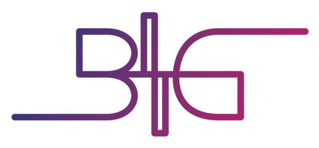 Project BIG logo