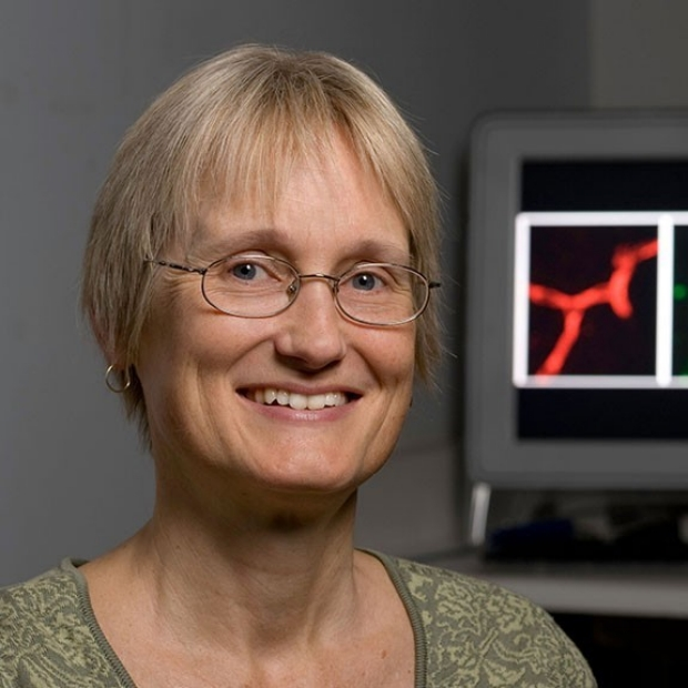 Katrin Andreasson
