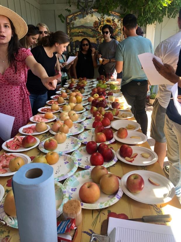 Apple Day 2019