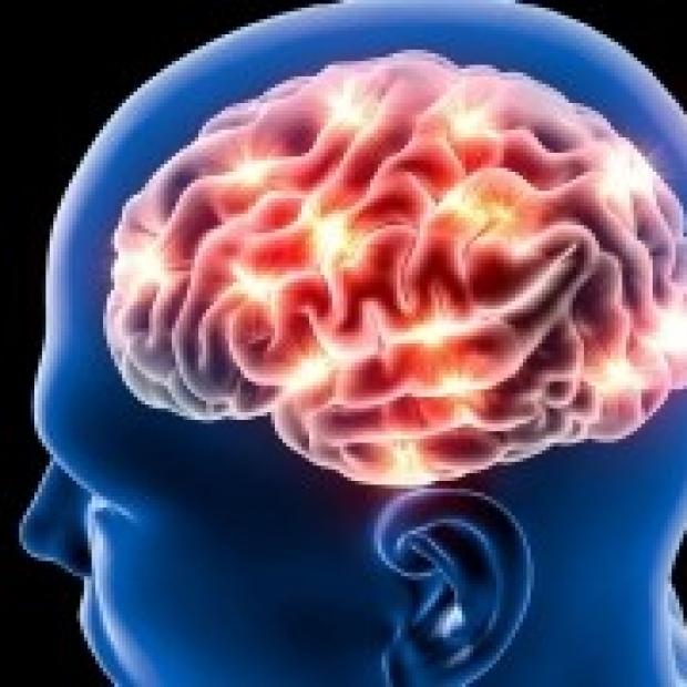 Epilepsy News