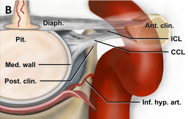 neurosurgery_research_lab_SNFTVR_JFM_Picture10