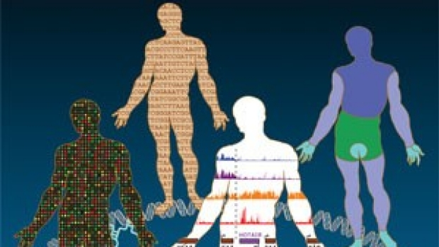 RNA, no mere messenger, calls some shots in gene activity, researchers find