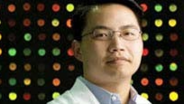Cancer stem cells created from skin cells in lab