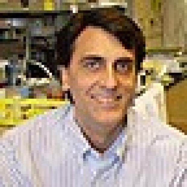 Researchers discover master regulator of skin development