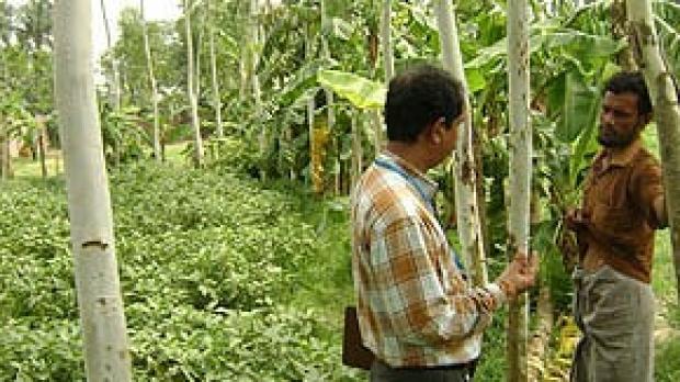 Tracking a silent killer in rural Bangladesh
