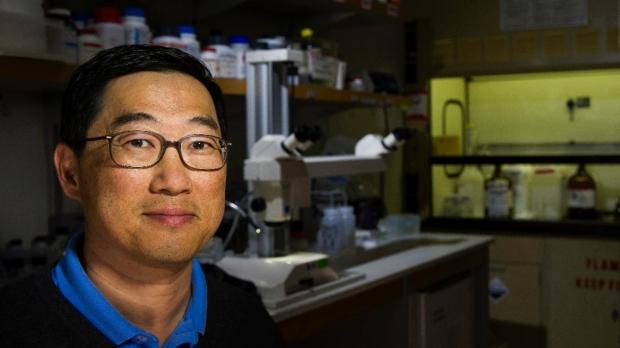 Seung Kim awarded prestigious Ho-Am Prize in Medicine