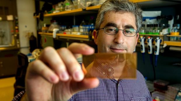 Researchers invent nanotech microchip to diagnose type-1 diabetes
