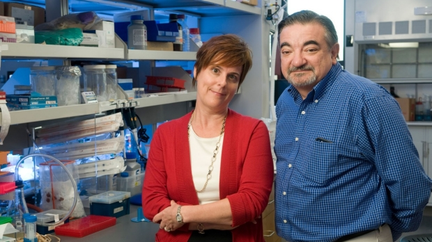Researchers create 'evolved' protein that may stop cancer from spreading