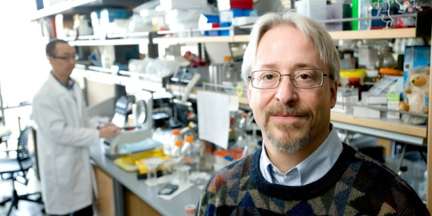 Drug may prevent development of invasive bladder cancer, researchers say