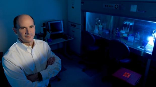 Stem cells faulty in Duchenne muscular dystrophy, researchers find
