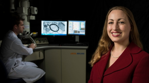 Brain tumor growth stimulated by nerve activity in the cortex, study finds