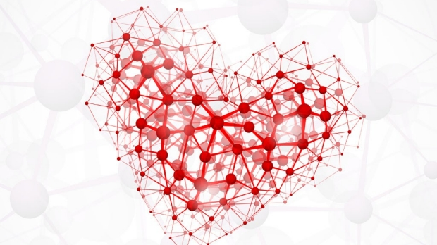 Precursor cells discovered that could help regrow heart arteries
