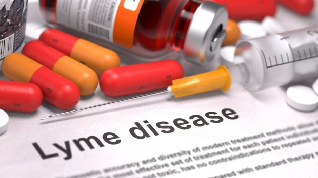 New compounds have potential to combat Lyme disease