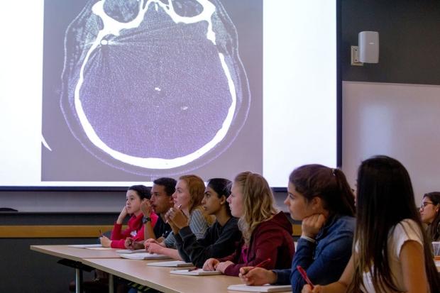 Teens attending a class about the brain